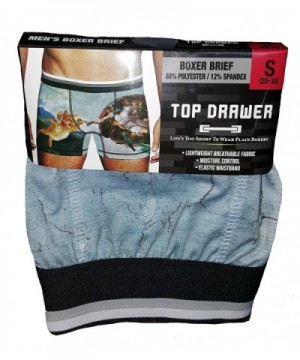 Kitty Sistine Chapel Painting Briefs
